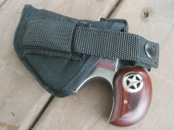 Taylors firearms Bond Arms Nylon Holster With Thumb Break