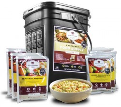 WISE FOODS  FOODS 120 SERVING BUCKET 20LBS FREEZE DRIED FOOD