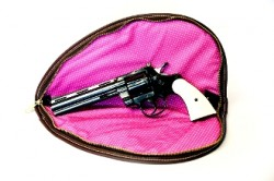 Carry Cleanly Large Handgun Case