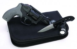 Smith and Wesson MP Bodyguard EDC 38SW SplP 1